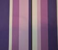 Rrpurple_stripes.pdf_comment_179986_thumb