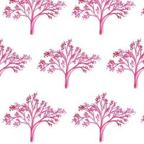 treesoflife
