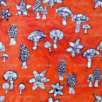 mushrooms, basic repeat