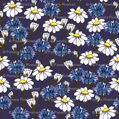 bachelor buttons and daisies 2014