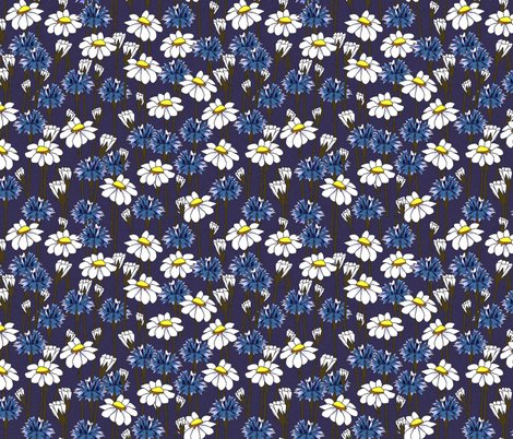 Rbachelor_buttons_and_daisies_2014_e_shop_preview