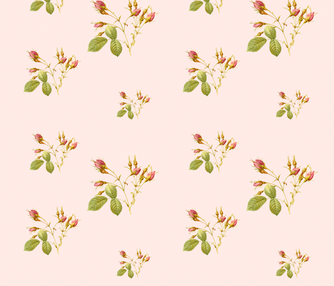 RoseBud in Sorbet pink fabric by lilyoake on Spoonflower - custom fabric