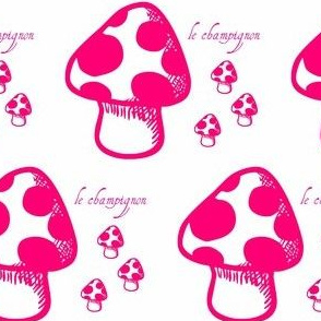 Le Champignon  by evandecraats__March_27__2012
