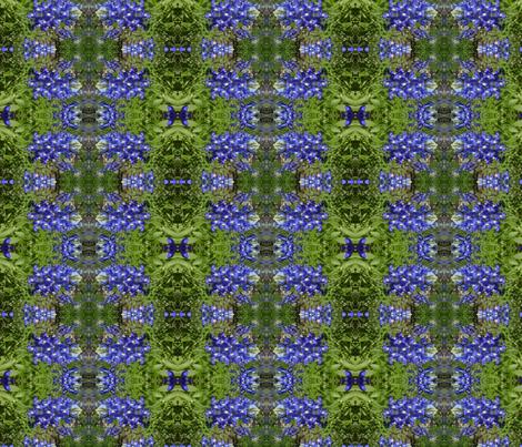 IMG00613-20120324-1512 fabric by kari's_place on Spoonflower - custom fabric