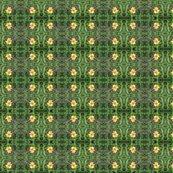 Rrrrrrrimg00610-20120324-1510_ed_ed_shop_thumb