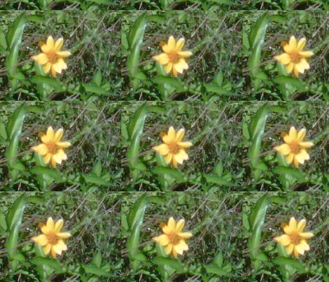 yellow flower big-ed fabric by kari's_place on Spoonflower - custom fabric
