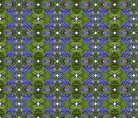 Rrrimg00613-20120324-1512_ed_shop_preview