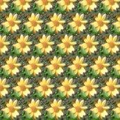 Rrrrrimg00610-20120324-1510_ed_ed_ed_ed_shop_thumb