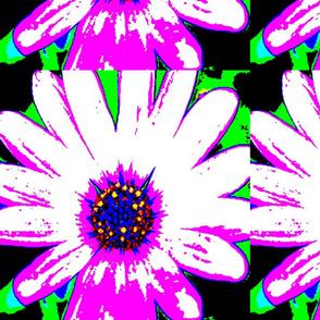 ELECTRIC FLOWER 18x18