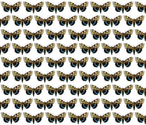 Butterfly Catocala fraxini fabric by zephyrus_books on Spoonflower - custom fabric