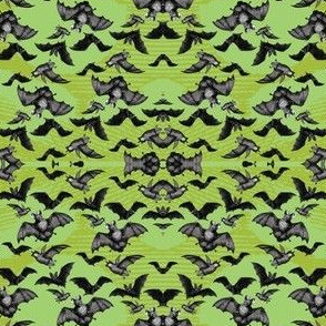BATS on Lime