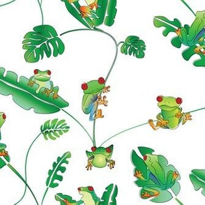 Even More Tree Frogs