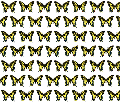 Butterfly Papilio machaon fabric by zephyrus_books on Spoonflower - custom fabric