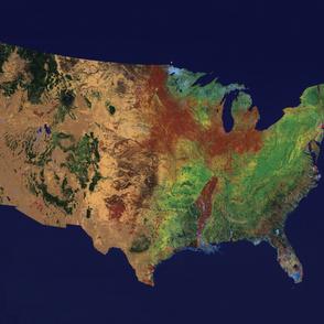USA Topographic Map