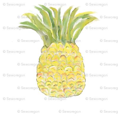 Pineapple Rainbow