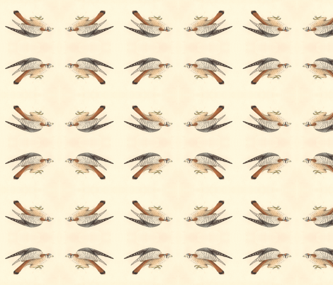American Sparrow Hawk (American Kestrel) - Bird / Birds of Prey fabric by zephyrus_books on Spoonflower - custom fabric