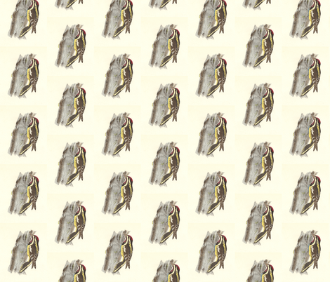 Yellow-bellied Sapsucker - Vintage Bird / Birds Print fabric by zephyrus_books on Spoonflower - custom fabric