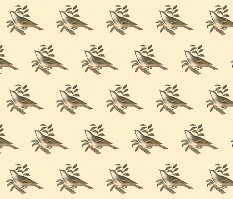 The Solitary Greenlet - Bird / Birds fabric by zephyrus_books on Spoonflower - custom fabric