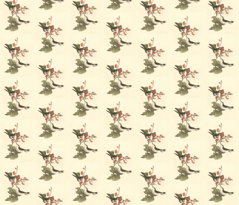 Ruby Throated Hummingbird - Bird / Birds fabric by zephyrus_books on Spoonflower - custom fabric