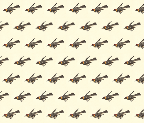 The Bay-breasted Warbler - Bird / Birds fabric by zephyrus_books on Spoonflower - custom fabric
