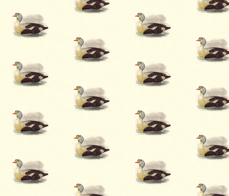 The King Duck Bird - Birds / Ducks & Geese (Goose) fabric by zephyrus_books on Spoonflower - custom fabric