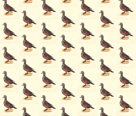 The Harlequin Duck Bird - Birds / Ducks & Geese (Goose) fabric by zephyrus_books on Spoonflower - custom fabric