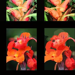exotic flowers in triple