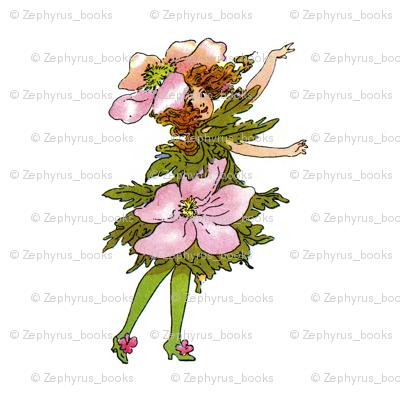 Flower Child (Children's Book) Wind-Flower (windflower)