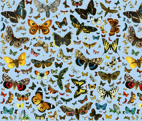 Large Butterfly Collage fabric by zephyrus_books on Spoonflower - custom fabric