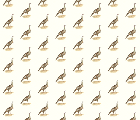 The Wild Turkey - Bird / Birds fabric by zephyrus_books on Spoonflower - custom fabric