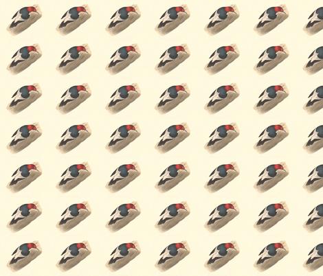 The Red-headed Woodpecker - Vintage Bird / Birds Print fabric by zephyrus_books on Spoonflower - custom fabric
