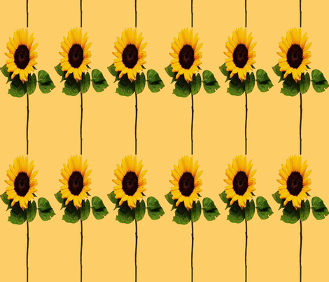 SUNFLOWER STRIPES fabric by bluevelvet on Spoonflower - custom fabric