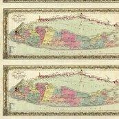 Rrr1855_travellers_map_of_long_island_shop_thumb
