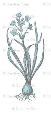 The Delicate Onion Bleu