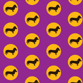 Groovy dachshund dots