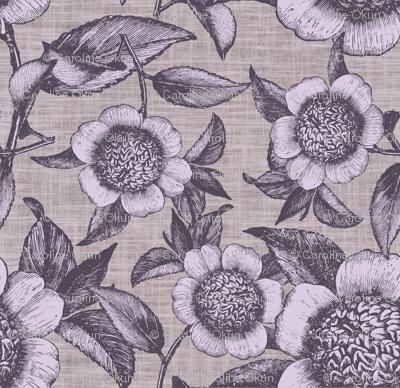 Camelia Organica Lilac