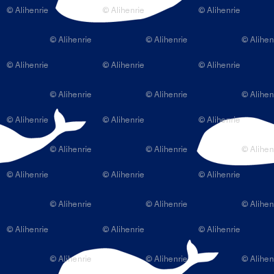 Whales_navy