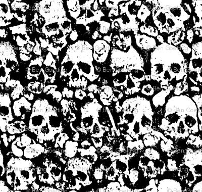 Skull Wall