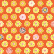 Rrrlittle_blooms_orng_shop_thumb