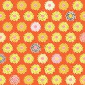 Rrrlittle_blooms_orng_shop_thumb