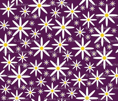 Field of Daisies-Purple