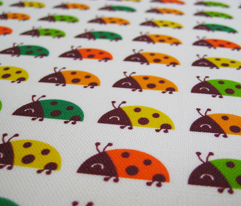 summer ladybugs