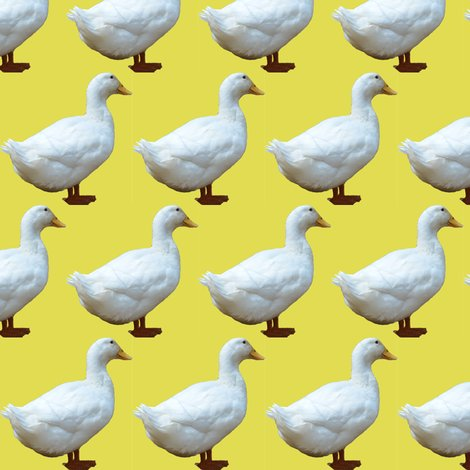 Rrrrrwhite_duck_on_yellow_shop_preview