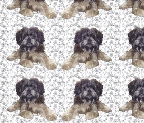 Affenpinscher fabric by dogdaze_ on Spoonflower - custom fabric