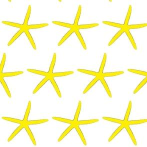 Finger Starfish Yellow