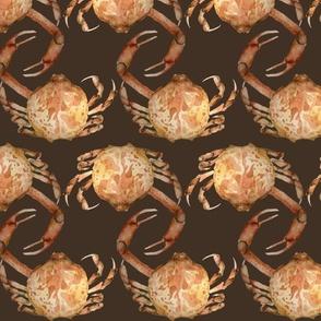 Crabs Watercolor