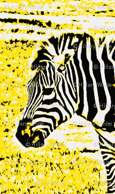 zebradrama-lemon
