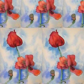 Mamo's  Poppies