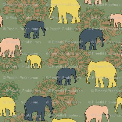 elephant mesmerised