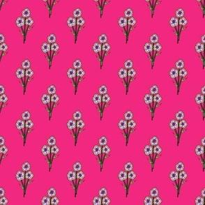 Periwinkle Posies on Pink